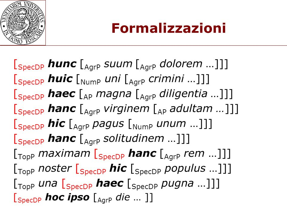 Formalizzazioni [SpecDP hunc [AgrP suum [AgrP dolorem …]]]